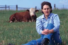 Temple Grandin is an American doctor of animal science and professor at Colorado State University, bestselling author, autistic activist, and consultant to the livestock industry on animal behavior. Dr Temple Grandin, Colorado State University, Showing Livestock, Animal Science, Stop Animal Cruelty, People Of Interest, Cool Books, Animal Welfare, Life Cycles