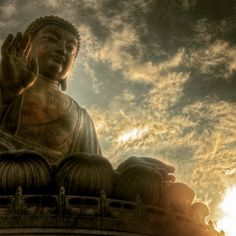 """There are only two mistakes one can make along the road to truth, not going all the way, and not starting."" -Buddha"