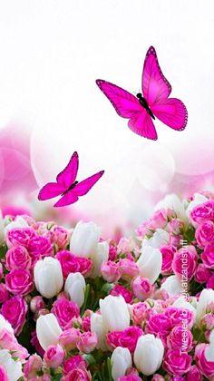Blue Roses Wallpaper, Blue Butterfly Wallpaper, Wallpaper Nature Flowers, Bling Wallpaper, Beautiful Landscape Wallpaper, Flower Background Wallpaper, Beautiful Flowers Wallpapers, Flower Phone Wallpaper, Flower Backgrounds