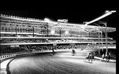 Roosevelt Raceway