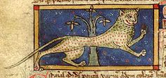 Bibliothèque Nationale de France, lat. 3630, Folio 75r  The leopard is the result of an illicit mating of a lion (leo) and a pard.