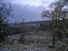Starting to snow