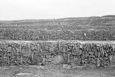 Pastures enclosed by stone walls, Aran Islands | 1980 | Hal Morgan
