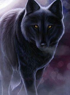 39 melhores imagens de wolves no pinterest lobo rtico animais de facebook black wolf hd wallpaperg 714958 fandeluxe Images