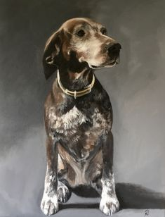 In memory of our lovely dog Sasha in her younger years when she was a little less grey! Dog Portraits, Insta Art, Oil On Canvas, Fine Art, Grey, Dogs, Artist, Animals, Animales