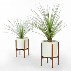 Case Study Planter W Stand White Modern Planters Indoor Pots