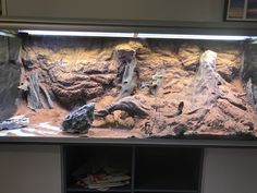 Amazing Reptiles Most current Screen Reptile Terrarium room Tips - Reptile Ter. - Amazing Reptiles Most current Screen Reptile Terrarium room Tips – Reptile Terrarium- Most cur - Reptile Habitat, Reptile House, Reptile Room, Reptile Cage, Reptile Enclosure, Terrariums, Decor Terrarium, Leopard Gecko Terrarium, Terrarium Reptile