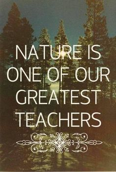 nature is a great teacher Teachers of the world: nature is a great teacher (canada and finland) part of the series: teachers of the world national film and sound archive of australia national film and sound archive of australia in rachel huneault's combined year 6/7 class, traditional teaching methods are.