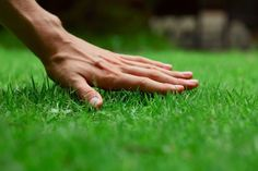 Why Lawn Irrigation is Important
