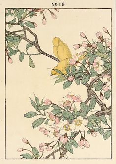 Crabapple, Canary Medium: Color woodblock Year: 1891 Size: Oban (12-1/2 x 8-3/4 inches) Stock Number: 30113 Price: $150 More at link