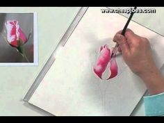 Beginning a Watercolor Painting with Nancy Couick - Part 2 of 5