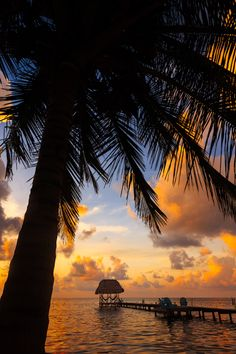 Caye Caulker, Belize — by Always Wanderlust (Adonis V.). Here's your quintessential tropical island shot...coconut silhouette, coconut hut, beach..eh? #waterlust More here:...