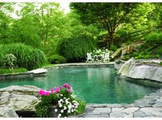 Nice naturalized pool