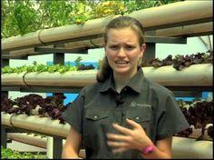 13-year old's successful aquaponics & aquaponics business - YouTube