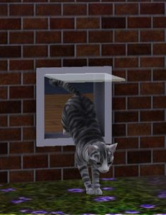 KittyWay animated cat door - unique first from Simlogical by Inge