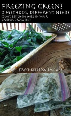How To Freeze Greens (Spinach, Kale, Collards, Swiss Chard and More)...either fresh or boiled...2 ways