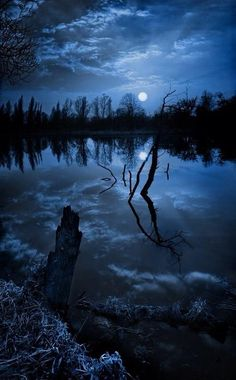 Photography of blue sky and night water clouds with trees reflections on cool lake. Moonlight and Night Sea View Beautiful Moon, Beautiful World, Foto Picture, Ciel Nocturne, Cool Pictures, Beautiful Pictures, Travel Pictures, Photo Dream, Blue Moon