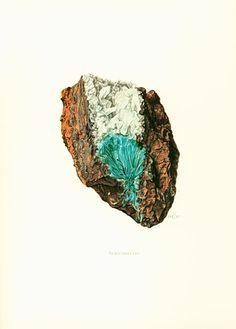 Geological Wall Art. Antique Mineralogy Print. Mineral wall art. Vintage geology art. Gift idea for geologist student. Gemstones illustrations.  Published in Paris. 45 year... #illustration #aurichalcite ➡️ http://jto.li/vxsK7