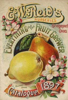 [E.W. Reid's Nurseries materials]