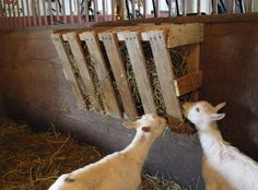 Looking to save some money around the farm? Then a Pallet Hay Feeder might just be the perfect project this weekend for you. Goat Hay Feeder, Diy Hay Feeder, Sheep Feeders, Goat Playground, Goat Shelter, Sheep Shelter, Horse Shelter, Goat Pen, Goat House
