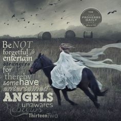 Be not forgetful to entertain strangers, for thereby some have entertained angels unaware. God Is For Me, The Lord Is Good, A Lovely Journey, Entertaining Angels, Because He Lives, I Believe In Angels, Daughters Of The King, Inspirational Thoughts, Wise Quotes