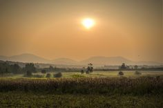 Golden Corn Field Sunset by Gajendra Kumar on 500px