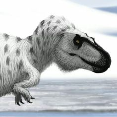 "Nanuqsaurus, the ""Polar-Bear Lizard"". Easy to see Why..."
