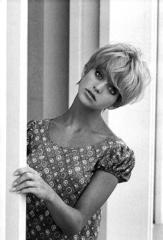 Goldie Hawn http://lauramcphee.tumblr.com/post/19653699090/goldie-hawn-1968