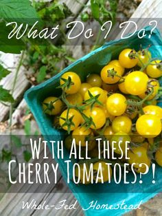 What do I do with all these Cherry Tomatoes?! How to use up cherry tomatoes. | Whole-Fed Homestead