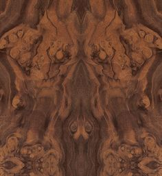 Walnut Cluster Veneer Texture, Wood Texture, Faux Painting, Petrified Wood, Paint Finishes, Types Of Wood, Wood Grain, Hardwood Floors, Exotic