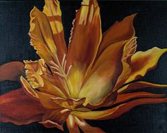 "Firestorm Cactus flower by Shelley Bauer Oil ~ 16"" x 20"""
