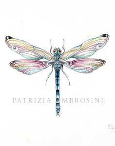 9x7 Watercolour Dragonfly.. No.5 Handpainted .... . NOT A PRINT ..Original Painting Blue