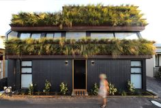 A little bit in love with this stunning home in my old North Fitzroy neighbourhood. Grass House by David Luck Architecture via Melbourne Architecture, Australian Architecture, Residential Architecture, Architecture Design, Rain Garden, Rooftop Garden, Green Facade, Green Roofs, Commercial Street