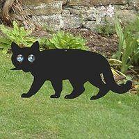 Cat Scat