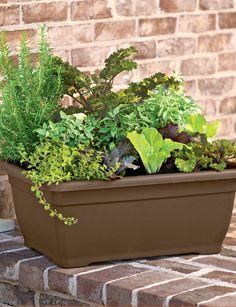 Self-Watering Patio Planter