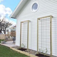 39 home privacy fence for patio & backyard landscaping ideas 31 Garden Yard Ideas, Garden Projects, Backyard Patio, Backyard Landscaping, Landscaping Ideas, Dream Garden, Home And Garden, Marquise, Garden Trellis