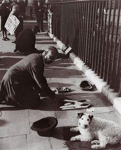 Albert Harris and his dog, Trafalger Square, London, 1930 - Photo George Lewis