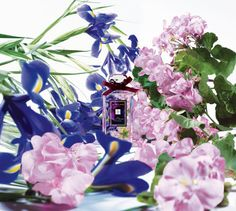 Iris & Lady Moore Jo Malone, New Fragrances, Iris, Lilac, Floral Wreath, Bloom, Wreaths, Party, London