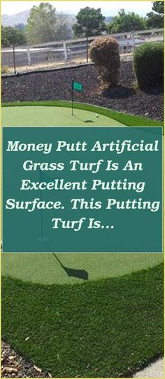 Money Putt Artificial Grass Turf is an excellent putting surface. This putting turf is ideal for putting short distances, short clip shots, and indoor or outdoo... | Diy Putting Green Indoor | Putting Green Backyard Diy | How To Build A Synthetic Putting Green | Cheap Putting Green Turf. This vacation weekend we made a little backyard dream come real. It was simple enough, simply a lot of manual work required #crazygolfing #putting #golfphotography #Artificial Grass Turf Putting Green Turf, Indoor Putting Green, Backyard Putting Green, Golf Photography, Putt Putt, Grass, Manual, Shots, Surface