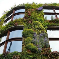 Vertical Gardening in Small Spaces - Bombay Outdoors