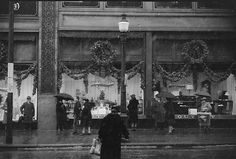Christmas Tree Store Rochester Ny