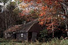 forgotten barns | forgotten sagging barn . . .