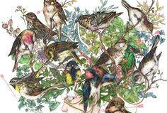 Fumi_Mini_Nakamura_Birds_Plants_And_Bodies_Entwined_01