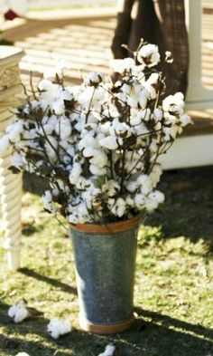 Container of cotton