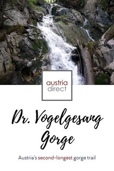 The longest gorge in Upper Austria was first opened to the public more than a century ago. The 500 steps on rock and wooden walkways offer a stunning view of the Dr. Vogelgesang gorge near Spital am Pyhrn in the Kalkalpen region. (The name comes from the local doctor who helped create the original trail.) #austria #upperaustria #kalkalpen #gorge Wooden Walkways, Cultural Capital, Family Days Out, Nature Reserve, Stunning View, The Locals, Austria, Trail, Waterfall
