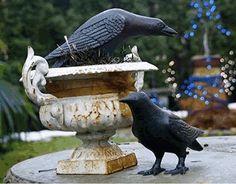 Black Crow Cast Iron Bird