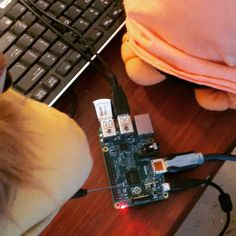 Something we loved from Instagram! Touching up the raspberry pi 2 b with bird tech. Look at penguino's cute feet. Hehe #technology #raspberrypi #cute #pets #feet #chicken #penguin #animals #birds #pc #computer by chickenleghorn Check us out http://bit.ly/1KyLetq