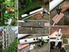Ideas : Vertical Strawberry Planter