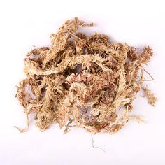 ⚫ 水苔 - ▶ 使用前以中心溫度 80℃ 熱水消毒 30min。 ▶ 使用過久或完全乾掉太久,會白化、萎縮,吸水力大衰減。 ◼ 作盆栽表層微景觀裝飾 ◾舖盆底保水保肥。 ⚫ 通常販售的是塊狀,從 $50-150+ 都有。品質優良的水苔組織完整,單絲長 20-30cm,不會斷裂或呈粉狀;品質不好的水苔保水力差、纖維細小破碎,更糟的是容易腐敗長虫變質。 ⬛ 苔蘚科,又名泥炭蘚,通常生在較高海拔山區陰濕地帶或沼澤,採集晒乾製成。也是生成泥炭土的主要成分。質地柔軟,富纖維素,乾淨無菌、不易腐敗、吸水力強 》自身乾重 20-30 倍的水,保水時間長又能維持透氣。多用在高接、扦插、或嫁接,防乾燥。適用於蘭花、育苗、或播種繁殖(種子發芽)。 Herbs, Meat, Green, Food, Essen, Herb, Meals, Yemek, Eten