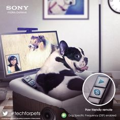 Remote control for dogs! #AprilFools